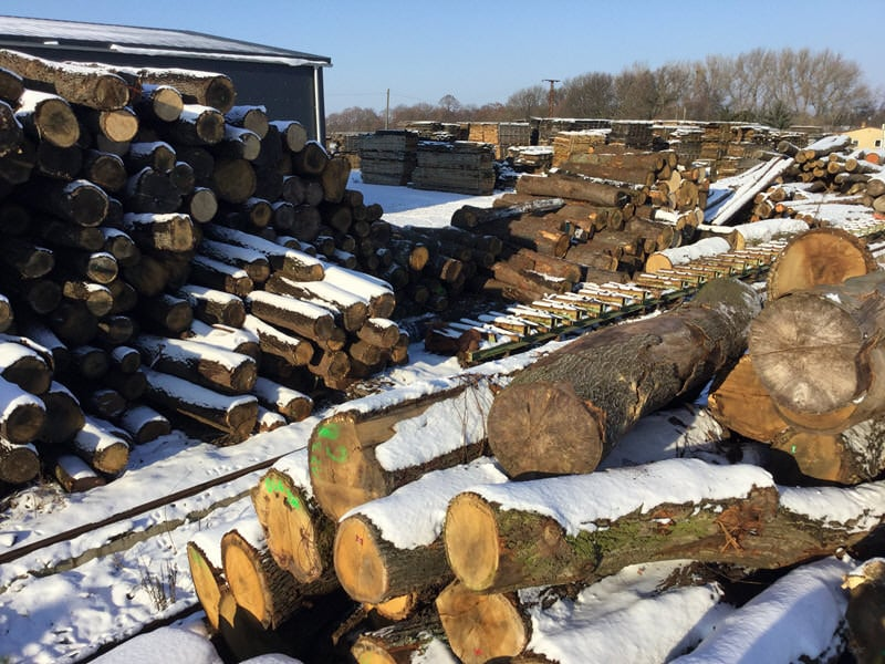 Sawmill - Order wood directly from the factory - - HOLZ-BARAN GmbH