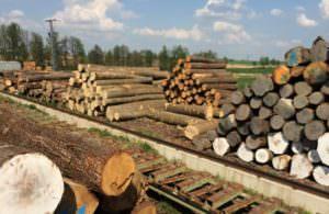 Holz kaufen im HOLZ-BARAN GmbH Sägewerk